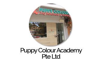 Puppy Colour Academy Pte Ltd